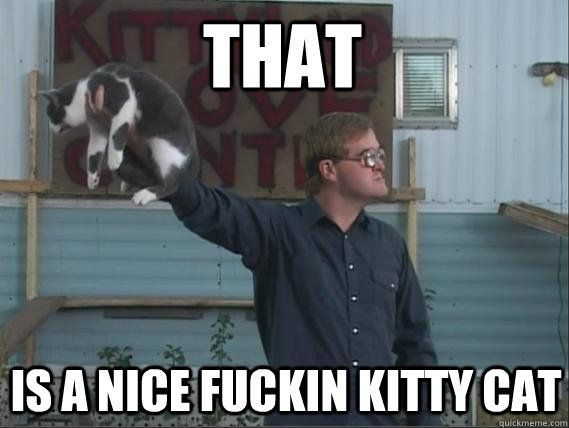 Bubbles, that is a nice fuckin' kitty cat #TrailerParkBoys