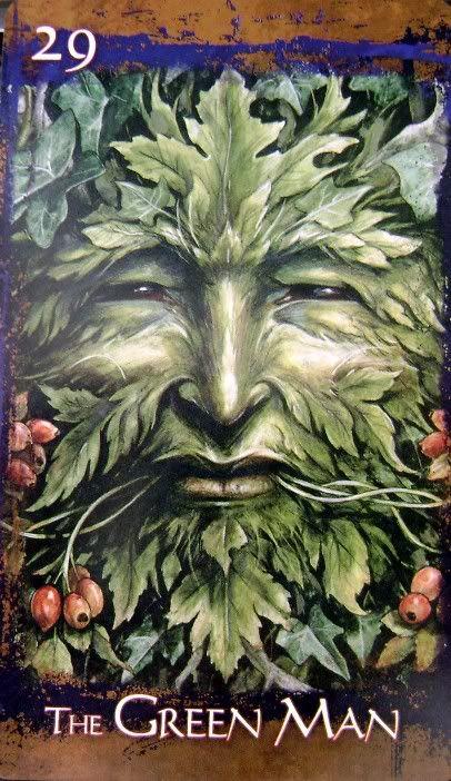 Green Man (di Brian Froud) è il contatto tra Uomo e Natura. La natura è un elemento fondamentale per me, quindi tramite immagini legate alla natura esprimo le cose per me importanti. Nella natura ritrovo me stessa, con la natura io sento un forte collegamento, perchè mi fa ascoltare il suono della mia anima. Intorno al Green Man ruota il resto del tatuaggio.