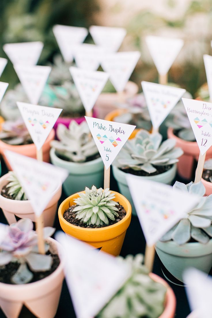 Not Only Do These Pretty Potted Succulents Make For Adorable Seating Cards They Also Work As Wedding Favours Well