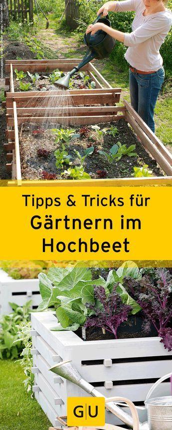 1000+ Ideas About Gartentipps On Pinterest | Mücken Abstoßen ... Bodenverbesserung Garten Mittel Tipps
