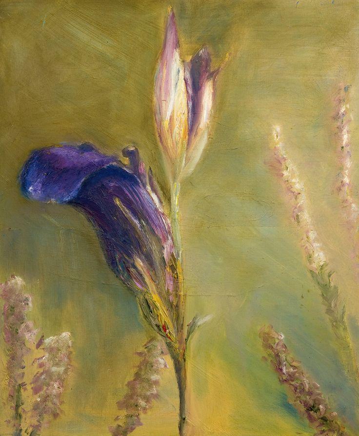Blauwe iris. Blue Iris. Oilpainting on cardboard. Size: 60 x 50 cm. FOR SALE: € 195,00