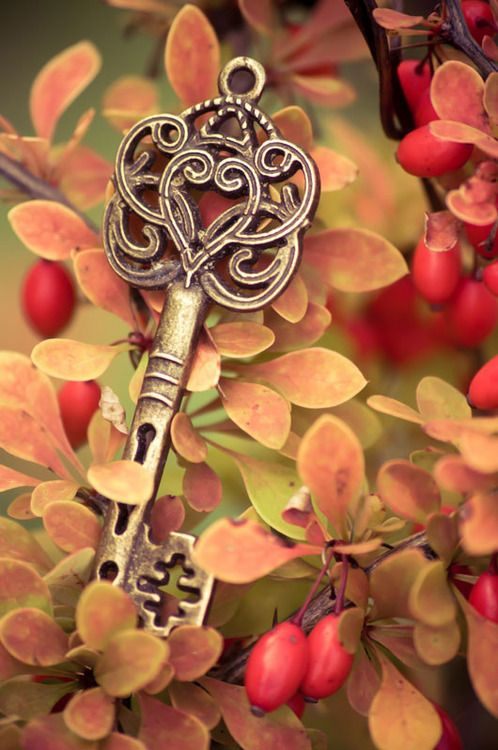 A key of possability for this lovely fall season! Wonder what doors it will open for you? j