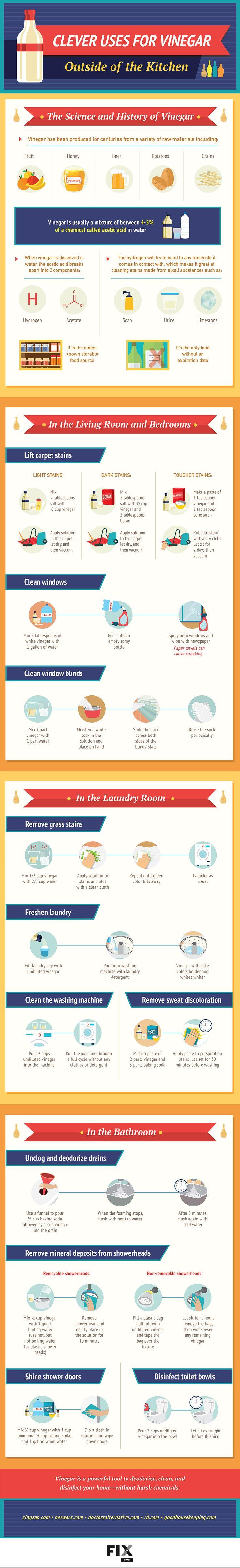 25 lesser known vinegar uses around the house • PeasOnToast