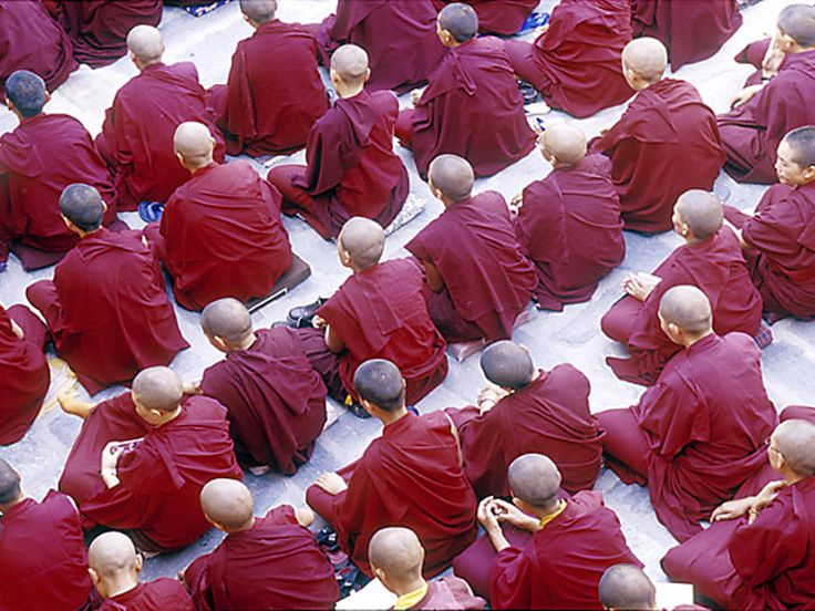 buddhist singles in abbott Discover buddhist friends date, the completely free site for single buddhists and those looking to meet local buddhists never pay anything.