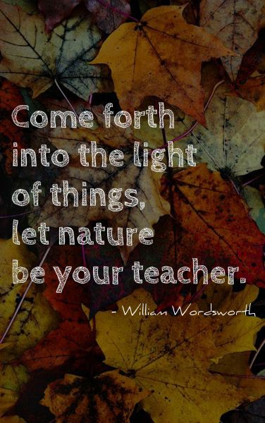 william wordsworth | Tumblr