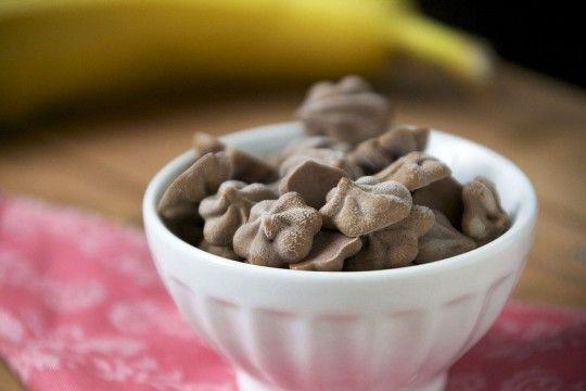 Chocolate Peanut Butter Banana Frozen Yogurt Drops - The Pescetarian and the Pig