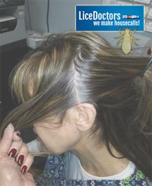 9 best babies can get head lice images on pinterest african the only way to get rid of lice is to suffocate the lice bugs ccuart Gallery