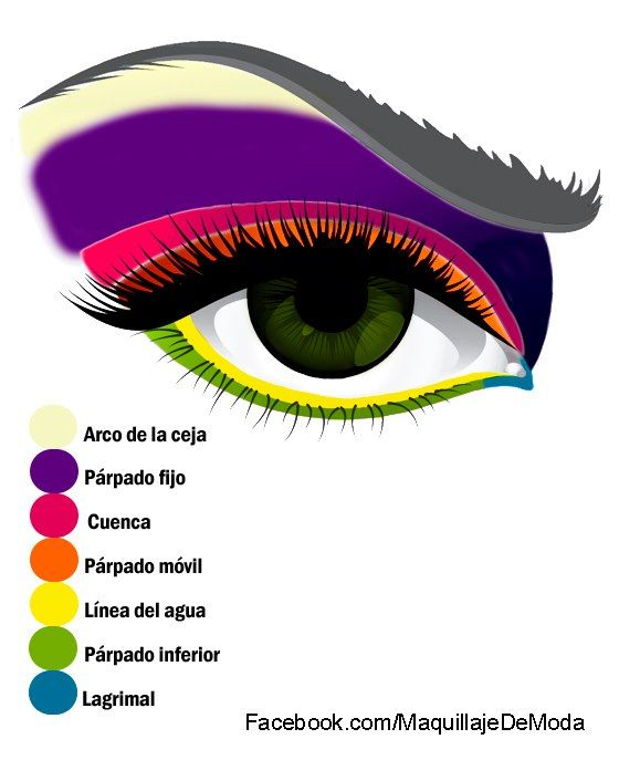 Mapa del ojo