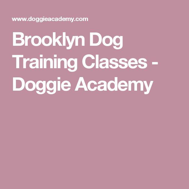 Brooklyn Dog Training Classes - Doggie Academy
