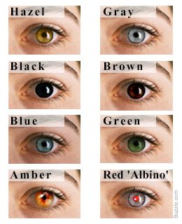 Eye Color Chart Interesting Facts About The Different