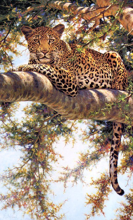 [EndLiss scans - Wildlife Art] Guy Coheleach - Eye to Eye (Jaguar)