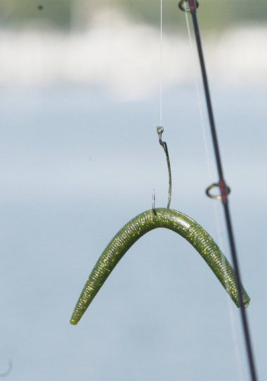 special plastic worm rig is a bass catching bit of magic