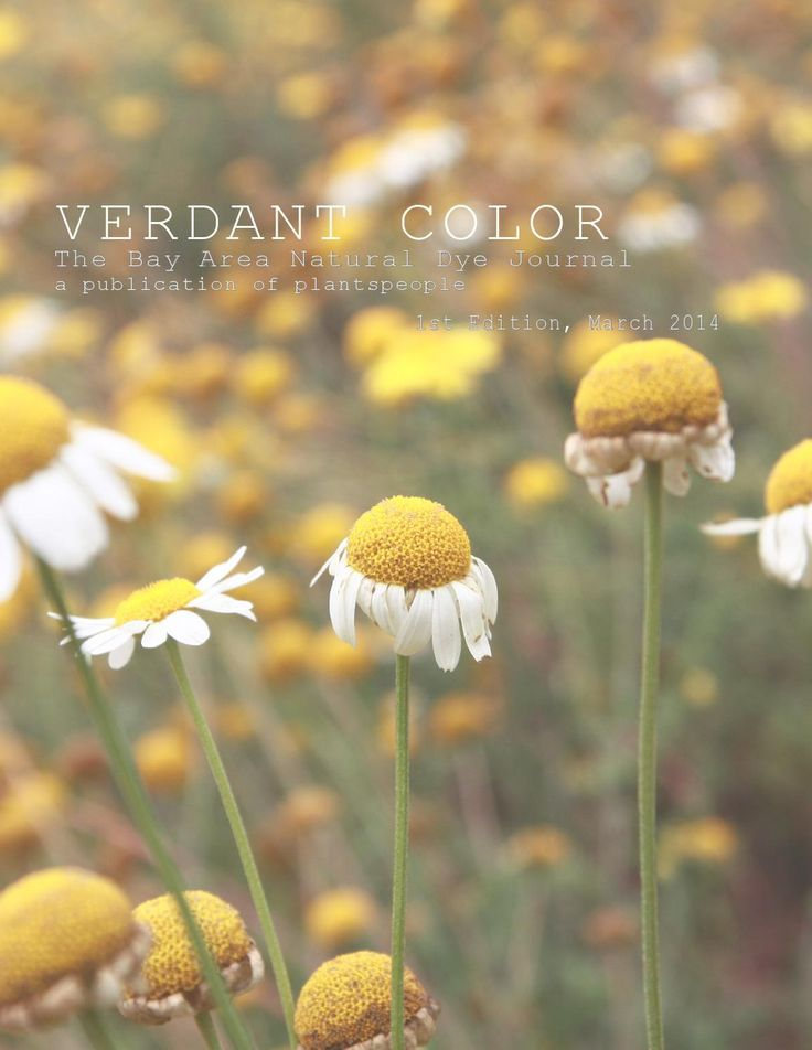 Verdant Color: The Bay Area Natural Dye Journal, edited by Deepa Natarajan - including articles by Kristine Vejar, Rebecca Burgess, Adrienne Rodriguez, Sasha Duerr, and Deepa Natarajan.