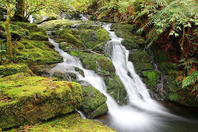 Waterfall At Gloucester Tops Barrington Tops National Park Nsw Australia Barrington Tops Waterfall National Parks
