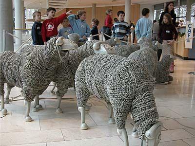 Schafe © Haller, Museum für Kommunikation Frankfurt