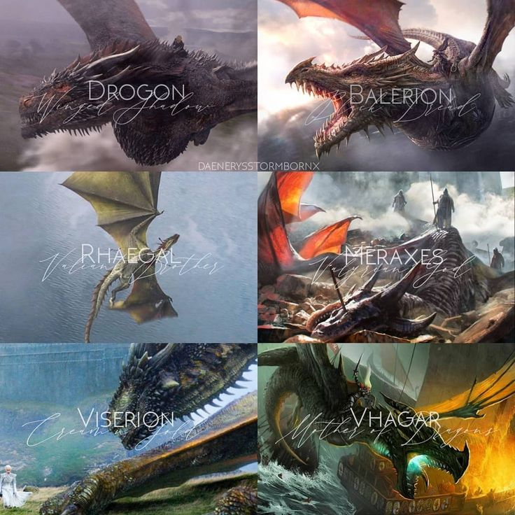 Balerion, meraxes, vhagar&drogon, rhaegal, viserion