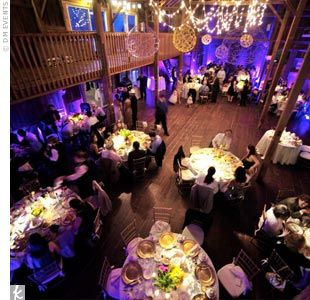 50 best purple yellow wedding decor images on pinterest yellow purple up lighting can add the wow factor you are looking for to any room junglespirit Images
