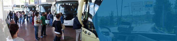 Damas bus from Sevilla --> Lagos