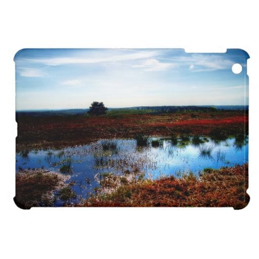 "Marshland :- This is the Ashdown Forest...or at least part of it. The forest is famous for one thing and one thing only...""Winnie The Pooh"". A.A.Milne lived at Cotchford Farm, in Hartfield and the settings for the ""Pooh"" stories are all within the Ashdown forest. Cover for the iPadMini. #iPadMini #marsh #marshland #bog #boggy #wet #sodden #waterlogged #ground #earth #natural #landscape #forest #space #view #water #reflection #sussex #england"
