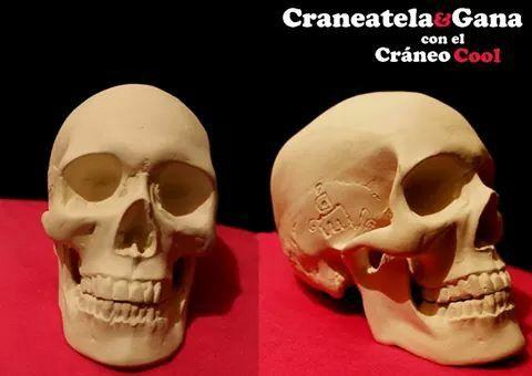 Craneo Ref. Cool. Con esta pieza te la podras cranear y ganar en este 2015. 3ra edición del concurso #craneandola  www.craneandola.com #skull #skullart #convocatoria #design #arte #calavera #craneo
