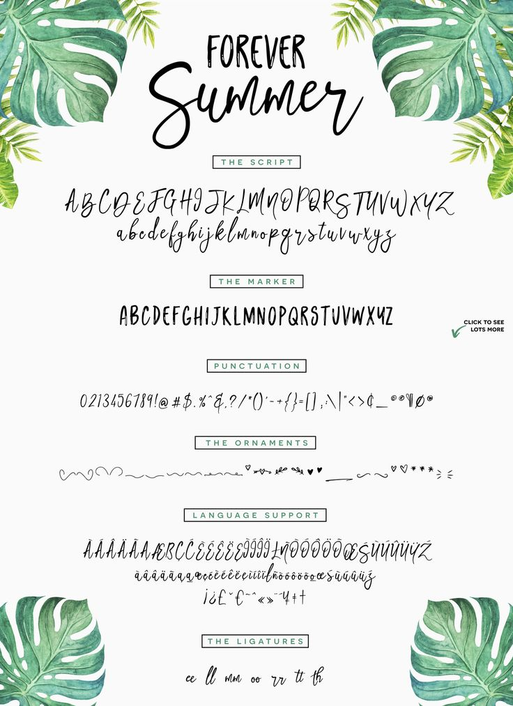 The long wait is over!! Our NEW March bundle is here!! Including 47 fonts and 10 HUGE graphics packs, this collection is definitey a must have. At just $29, this huge bundle is over 96% OFF. As always this bundle includes our Complete Commercial License, allowing you to use all products for both personal and commercial use. Grab your copy today, this pack won't be around for very long.