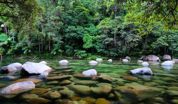 Mossman Gorge, Cairns Australia