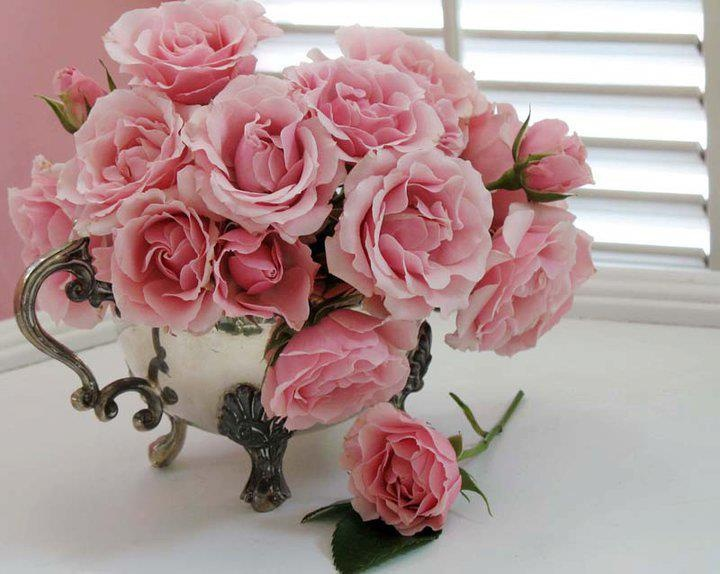 """Simplesmente as rosas exalam,o perfume que roubam de ti"": Pink Flower, Color Roses, Pink Roses, Happy Birthday, Floral Design, Bouquets, Flower Power, Beauty Roses, Beauty Flower"