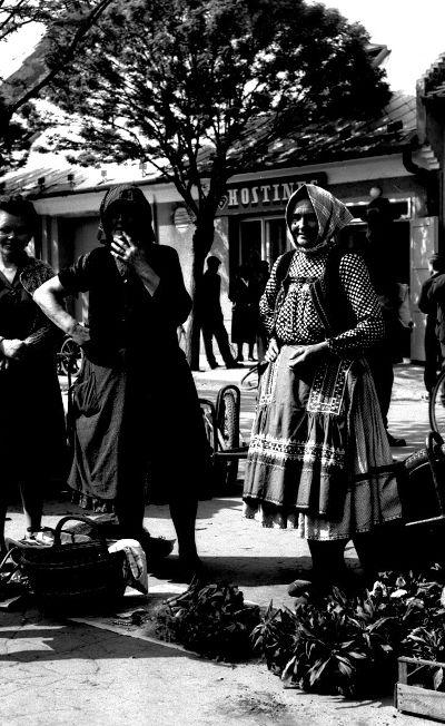 Women in Trnava