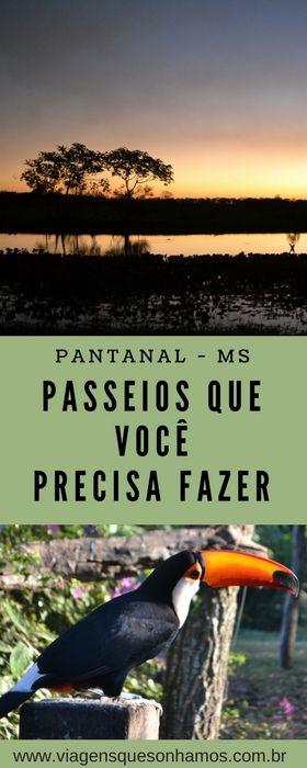 Os melhores passeios para você fazer e viver uma típica aventura pantaneira. #pantanal
