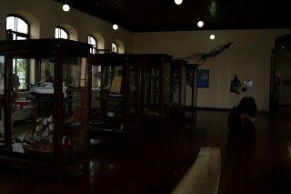 Museu de Pesca - Santos S/P Barcos, Navios....