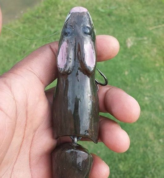 Homemade Fishing Lure Blog: Test Tank Tuesday Rats