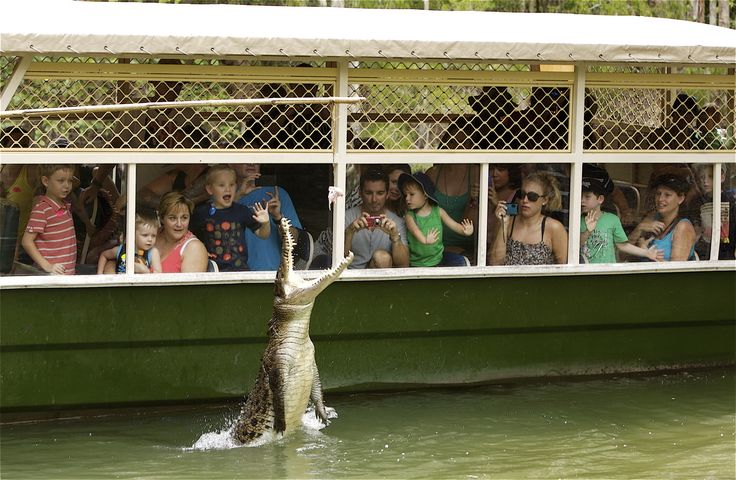 Hartleys crocodile farm