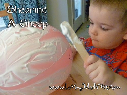How 2 Shear a Sheep: Need: Balloon, Sharpie, Shaving Cream, Popsicle Stick & cover for the table. To give the full experience (without giving a 3 year old a razor and a full grown sheep), he shaved a balloon with a Popsicle stick! Instructions: Blow up a balloon and draw a sheepy face. Add shaving cream and shave using the stick. Fun times!