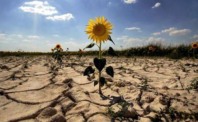 Cambio climático afecta ya a la salud pública, seguridad alimentaria e hídrica