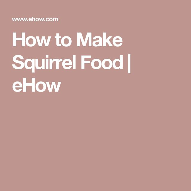 How to Make Squirrel Food | eHow