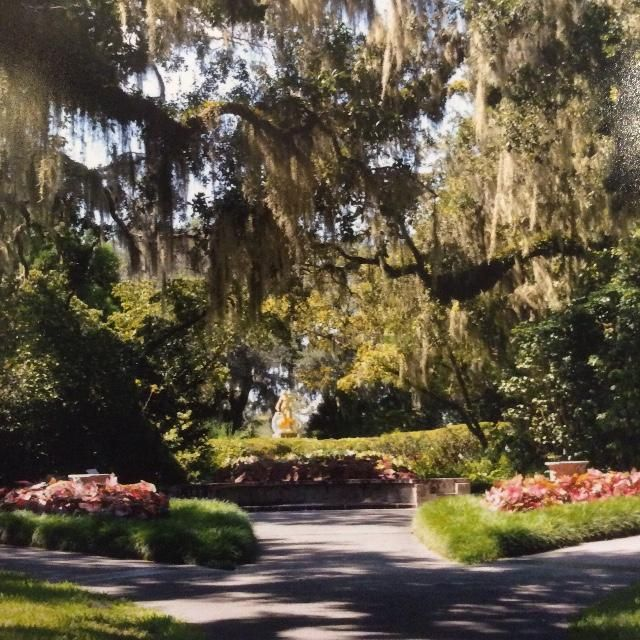 9be0ab994d6e59df43c5cb3a055ba6f4 - Botanical Gardens In Myrtle Beach South Carolina