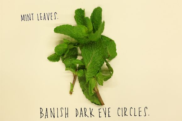 Mint, due to its flavonoids, is an antioxidant and great for diminishing dark circles .    Chop and crush a sprig of mint leaves.  Apply the mashed leaves to dark under eye circles, leave for 20 minutes then rinse.