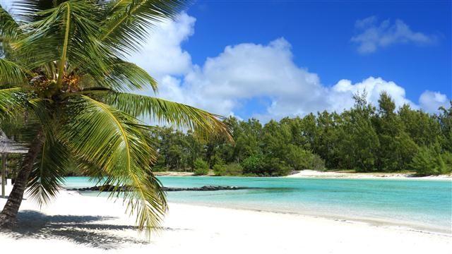 Romantik Ada Mauritius Hint Okyanusu'nda olağanüstü doğal güzellikleri, mercan kayalıkları, yemyeşil bitki örtüsü ve nesli tükenmiş Dodo Kuşu ile dünyanın en romantik adalarından biri olan büyüleyici Mauritius...