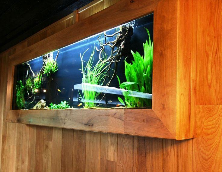 MUUR-AQUARIUM - Speciaalzaak voor aquarianen en vijver- liefhebbers, met advies en ondersteuning bij aankoop van vissen, planten en benodigdheden. Een van de grootse aquaria/vijvercentrums van europa