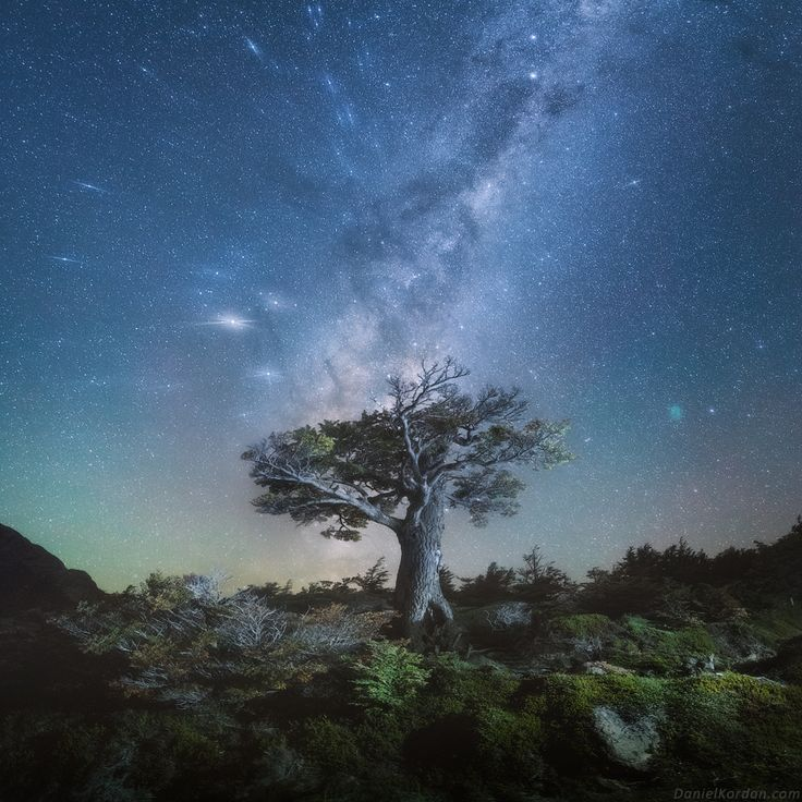Patagonia magic by Daniel Kordan - Patagonia - 500px