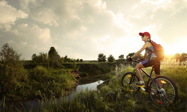 Bicycle on a wild meadow (Shutterstock: see credit below)