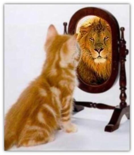 Dimagrire è una questione di autostima? Per poter dimagrire è importante lavorare sulla propria immagine mentale.