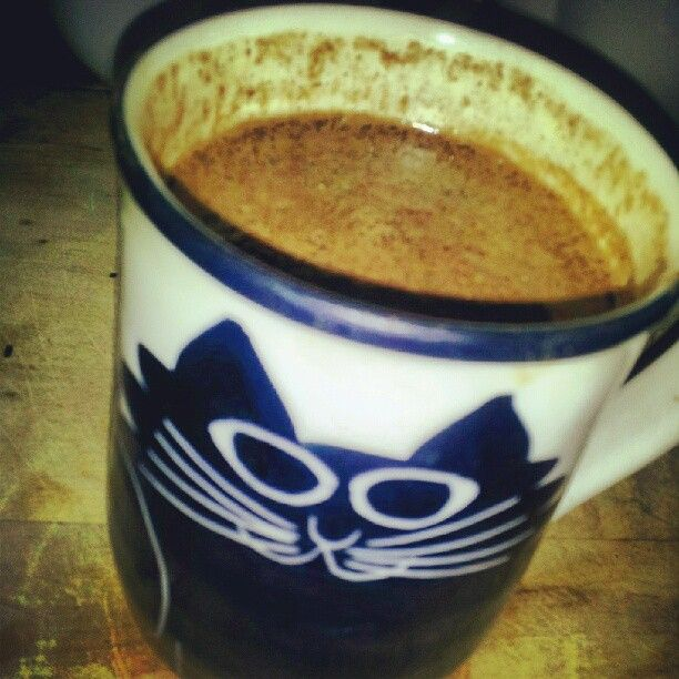 Reishi extract raw cacao green tea pumkin seed Brazil nut ELIXIR in the infamous Kitty mug :-P