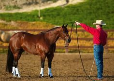 Clinton Anderson's Longeing for Respect: Circling Slideshow   Horse&Rider