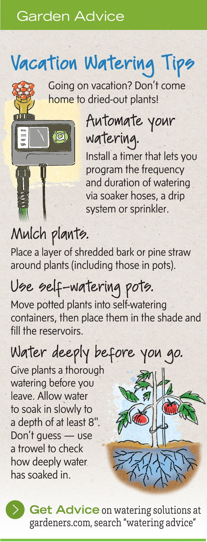 The big list of self watering planters for stylish gardening anywhere - Watering Plants While Away Vacation Watering Fruit Gardenvegetable