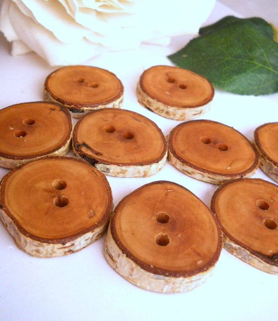 Paper Birch Wood Tree Branch Buttons 1 1/8 to 1 1/4 in