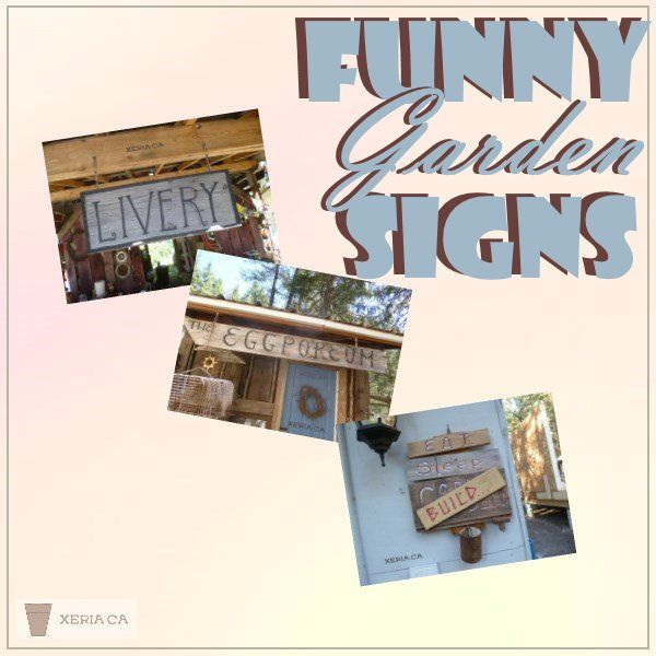 Funny Garden Signs   Witty, Whimsical And Comical Painted And Rustic Signs.