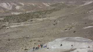 Image copyright                  Peter Wilf                  Image caption                                      The fossils were unearthed in Patagonia, Argentina                                Life in the southern hemisphere appears to have recovered more quickly than expected from the asteroid strike that wiped out the dinosaurs. In North America, it took 9 mi