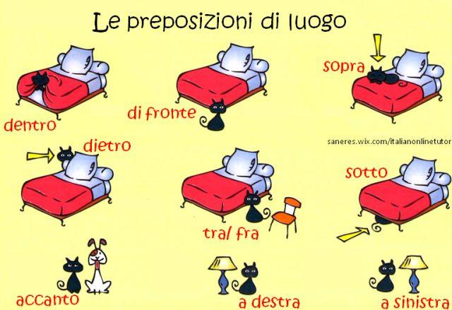 Vi ricordate le preposizioni di luogo?  Ripassiamole con il gattino nero.  Courses&Prices: http://saneres.wix.com/italianonlinetutor  Serena Italian's BLOG: http://serenaitalian.wordpress.com/