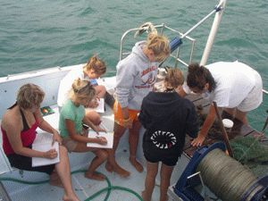 Marine Biology the subjects in which college students major nominal